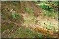 NR9088 : Crossing tracks by Patrick Mackie