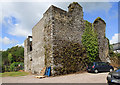 W9766 : Castles of Munster: Shanagarry, Cork (1) by Mike Searle