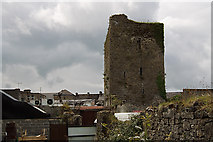 S1258 : Castles of Munster: Black Castle -Thurles, Tipperary by Mike Searle