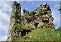 S3813 : Castles of Munster: Clonea, Waterford (3) by Mike Searle