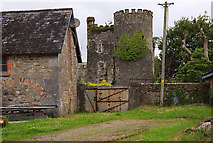 S1419 : Castles of Munster: Kilmanahan, Waterford by Mike Searle