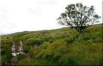 NR4556 : Ford across Allt nan Gad, Islay by Becky Williamson