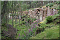 NJ1863 : Cutties Hillock Quarry by Anne Burgess