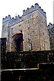 R4560 : Bunratty Folk Park - Site #4 - Castle - View over Wall by Joseph Mischyshyn