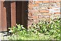 SK8170 : Bench mark at Marshgate Farm by Alan Murray-Rust