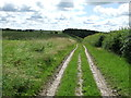 TL6154 : Long Distance Footpath by Keith Evans