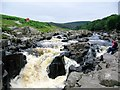 NY8728 : The River Tees above High Force by Jeff Buck