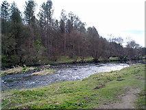 NZ1859 : River Derwent at Owlet Hill by Robert Graham