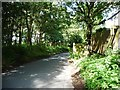 SE3541 : Bracken Park back garden fences by Christine Johnstone