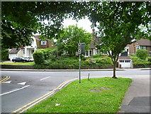 TQ3060 : Looking across Old Lodge Lane, Reedham by Marathon