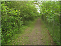 TL3951 : Footpath above the closed Barrington Quarry by Given Up