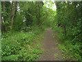 TL3851 : Footpath across Chapel Hill by Enttauscht
