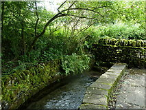 SK2474 : Stream by the village street, Calver by Andrew Hill