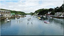 SX2553 : Looking Up The River Looe by Ian Knight