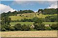 TQ1751 : Box Hill by Ian Capper