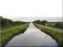 N3625 : Grand Canal east of Tullamore, Co. Offaly by JP