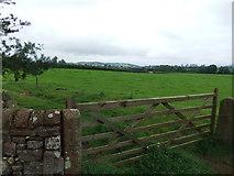 NY5027 : Fields near Yanwath by David Brown