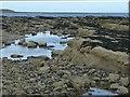 NU2611 : Rock pools on Marden Rocks by Russel Wills