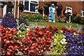 SS9412 : Tiverton : Flowers Lower Cotteylands by Lewis Clarke