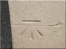 SE4048 : Ordnance Survey Cut Mark by Peter Wood