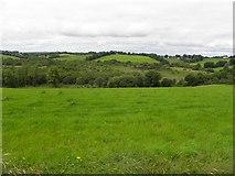 H5711 : Cornavoggy Townland by Kenneth  Allen