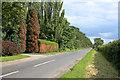 SK8467 : Chapel Lane by Alan Murray-Rust