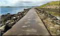 J4968 : Causeway to Rough Island (13) by Albert Bridge