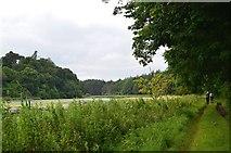 NT5682 : Track alongside Balgone Loch by Jim Barton