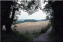 TQ1148 : View from White Downs Lane by Peter Shimmon