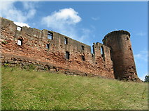 NS6859 : Bothwell Castle from the southwest by M J Richardson