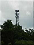 SK3069 : Mast at Rodknoll Farm by Rob Howl