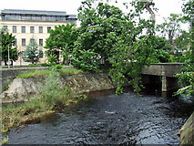 NT2273 : Water of Leith by Thomas Nugent