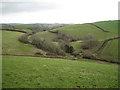 SX8554 : Stream valley south of Brambletorre by Robin Stott