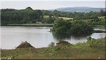 G8233 : Carrigeencor Lough by Richard Webb