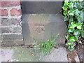 SJ3885 : Bench mark in Mersey Road, Aigburth by John S Turner