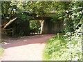SO8992 : Baggeridge Brick Bridge by Gordon Griffiths