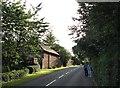 SK5141 : Strelley: Main Street on a July evening by John Sutton