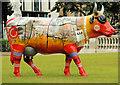 J3374 : Cow Parade, Belfast (5) by Albert Bridge