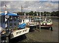 TQ2575 : Houseboats, Prospect Quay by Derek Harper