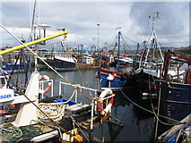 NM6797 : Fishing boats in Mallaig harbour by Gareth James