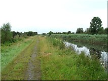 N1825 : Grand Canal in Turraun, west of Pollagh, Co. Offaly by JP