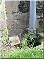 TR1457 : Cut bench mark with bolt on St Midred's church by Brian Westlake