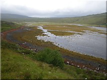 NG4930 : Looking upriver at the braided channel tidelands of Sligachan River by C Michael Hogan
