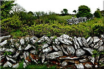 M2300 : The Burren - R480 - Stone Walls, Shrubbery, Fields near Poulnabrone Dolmen Site by Joseph Mischyshyn