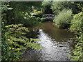 TQ1750 : Pipp Brook, Pixham by Colin Smith