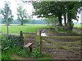 ST8690 : Muddy Footpath by Nigel Mykura