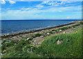 NS1901 : On the Ayrshire Coastal Path at Dipple by Mary and Angus Hogg