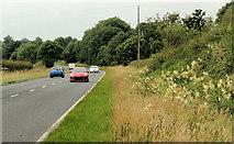 J3599 : The Belfast Road near Larne (5) by Albert Bridge