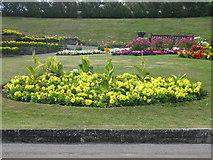 SY6880 : Greenhill Gardens, Weymouth by Alex McGregor