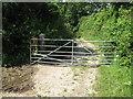ST7169 : Lansdown Lane gate by James Ayres